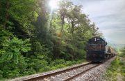 قطار رشت – مشهد همه روزه میشود