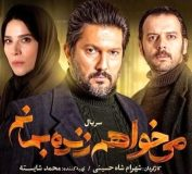 توقیف فیلم پرطرفدار شبکه نمایش خانگی با شکایت ناجا